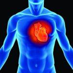 Suy thận dẫn đến suy tim– nguyên nhân dođâu?